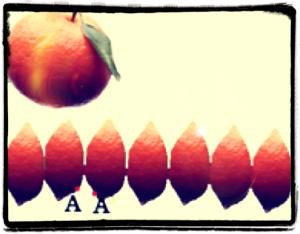 """Non è possibile """"appiattire"""" una buccia d'arancia su una superficie piana... senza deformarla!"""