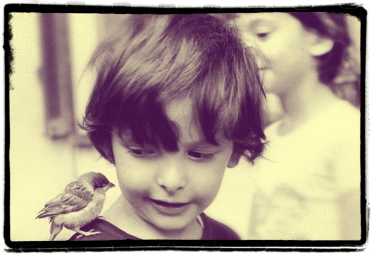 """Un'immagine raccolta da Bruno Munari e inserita nel suo libro di filastrocche per bambini """"Ciccì Coccò"""""""